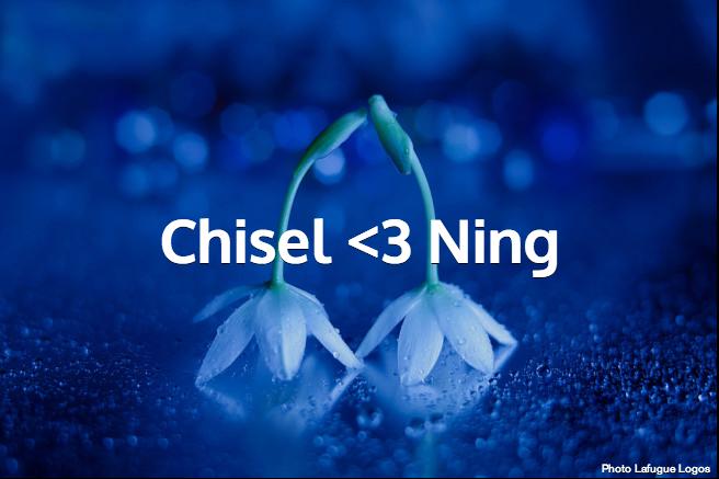 Chisel <3 Ning