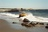 Authentic Seacoast Resorts