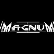 DJ Magnum