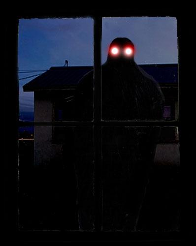 Una sombra: Mothman. Capítulo V