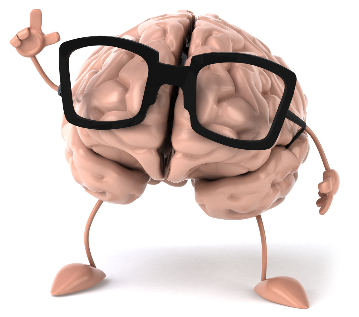 Some great stuff about the brain for L&D Professionals from the CIPD - part 1