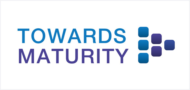 Towards Maturity: Capturing and Sharing Company Know-How