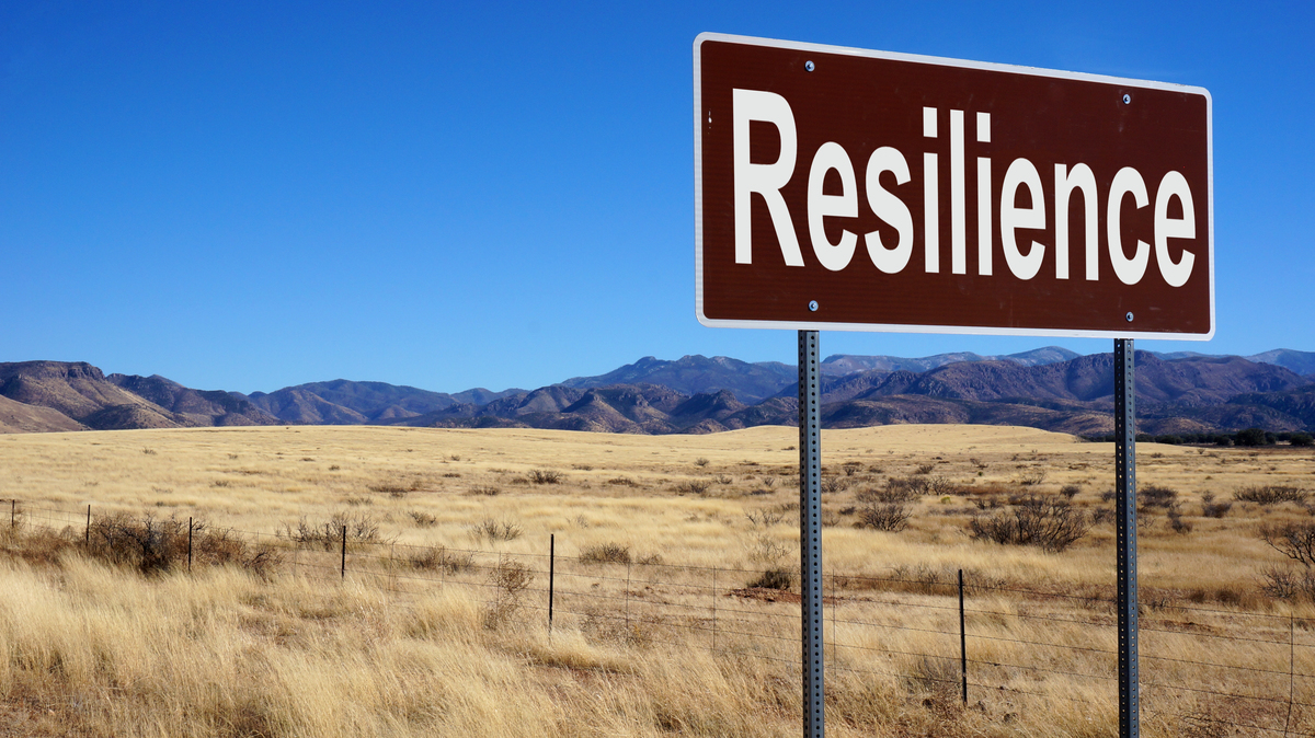 Developing Resilience - Get Organised