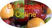 Seminario  Virtual On Line de Liofilización Básica