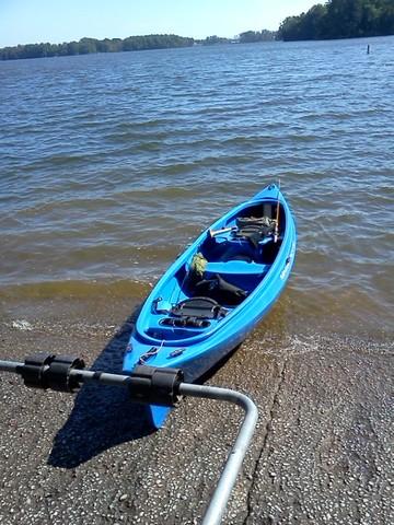 Mad River Canoe Adventure 14 - Bluegill - Big Bluegill