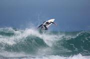 West Coast ...Flying High