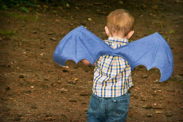Dragon or Bat Wings Costume Tutorial