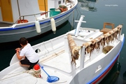 «Ο μικρός ψαράς της Πάρου»