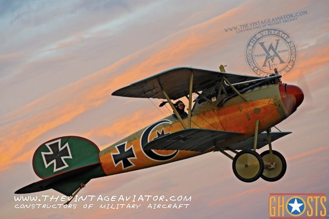 The Vintage Aviator