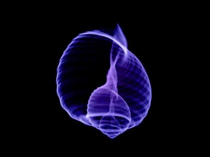 ვილჰელმ რენტგენი, rentgen, miracle, qwelly, რენთგენი, სხივი, რენტგენი, rentgeni, qwellyblog, sxivi