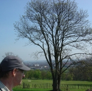 Alexandra Park Bird Walk