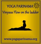 New Vinyasa Flow class on the ladder