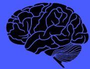 Black Brain White Brain book launch - GNR Tavern Feb 20 8pm