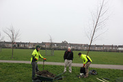 Tree Planting in Priory Park followed by a Tree Walk