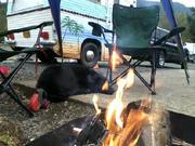winter camping with Olive !
