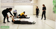 LEIMAY Ludus Training Community Class