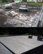 Making Progress - Roof