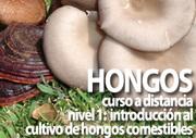 Curso a Distancia de  Introducción al Cultivo de Hongos Comestibles