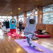 Daily Yoga Classes in Bangalore