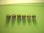 Evolution Of A Membrane -Shelf
