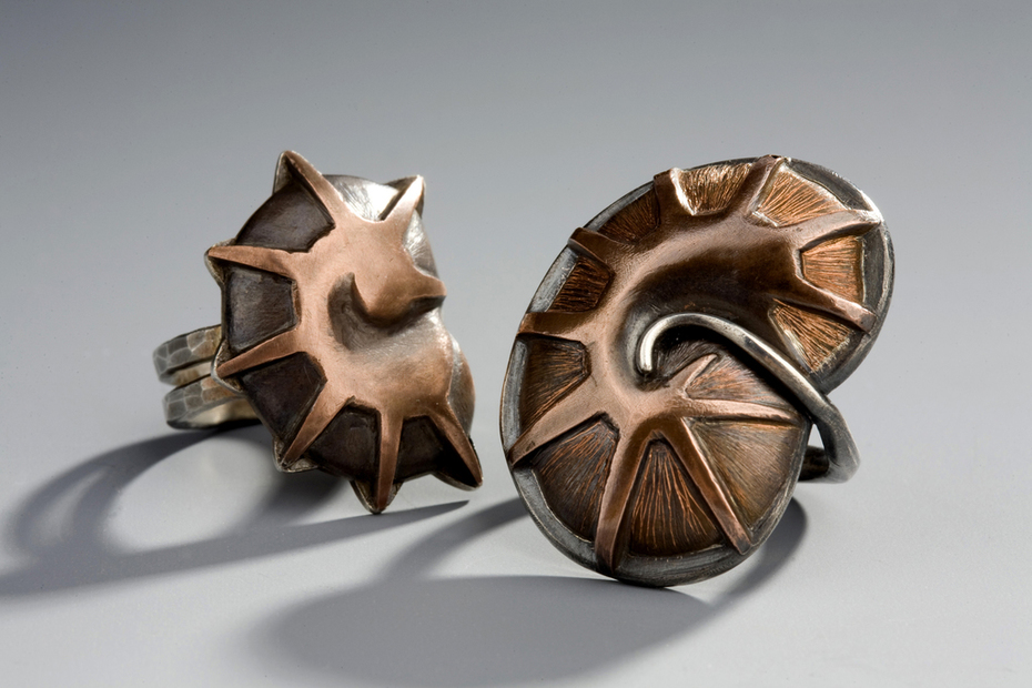 Petrified and Fossil Rings