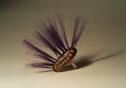 Bug Ring (2)