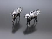 "Equus ferus cicadomorpha, ""Wild Horse Cicada"""