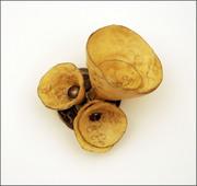 Sweet Potato Series
