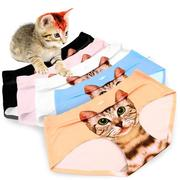 Crazy Cat Seamless Panties