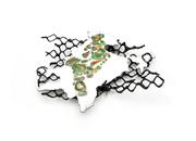 Borders (India and Pakistan)