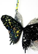 Download Nature- Old World Swallowtail (detail)