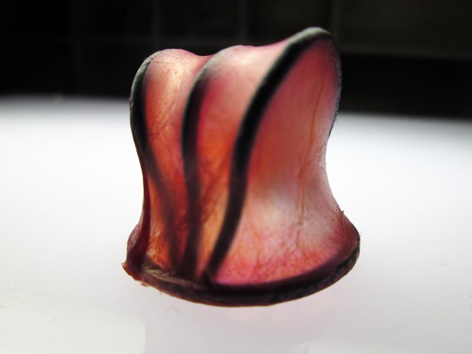 Material Explorations - Skin Pins