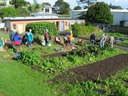 Spring Master Gardener course