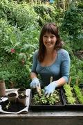 Daltons School of Gardening - free workshops