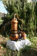 Naturkosmetik selber aus Pflanzenwässern herstellen