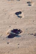 Sand unter meinen Füssen - Prozessarbeit