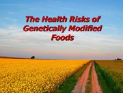 Health Risks of Genetically Modified Foods (And How to Avoid Them)