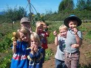 Family Potato Harvest and Cider Pressing