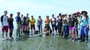 Become a citizen scientist with North Sound Stewards