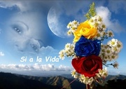 Te Amo Venezuela - Si a la Vida