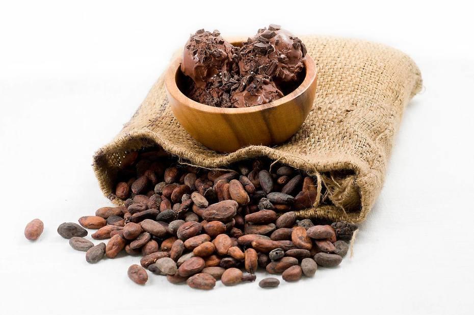 Chocoladeroomijs