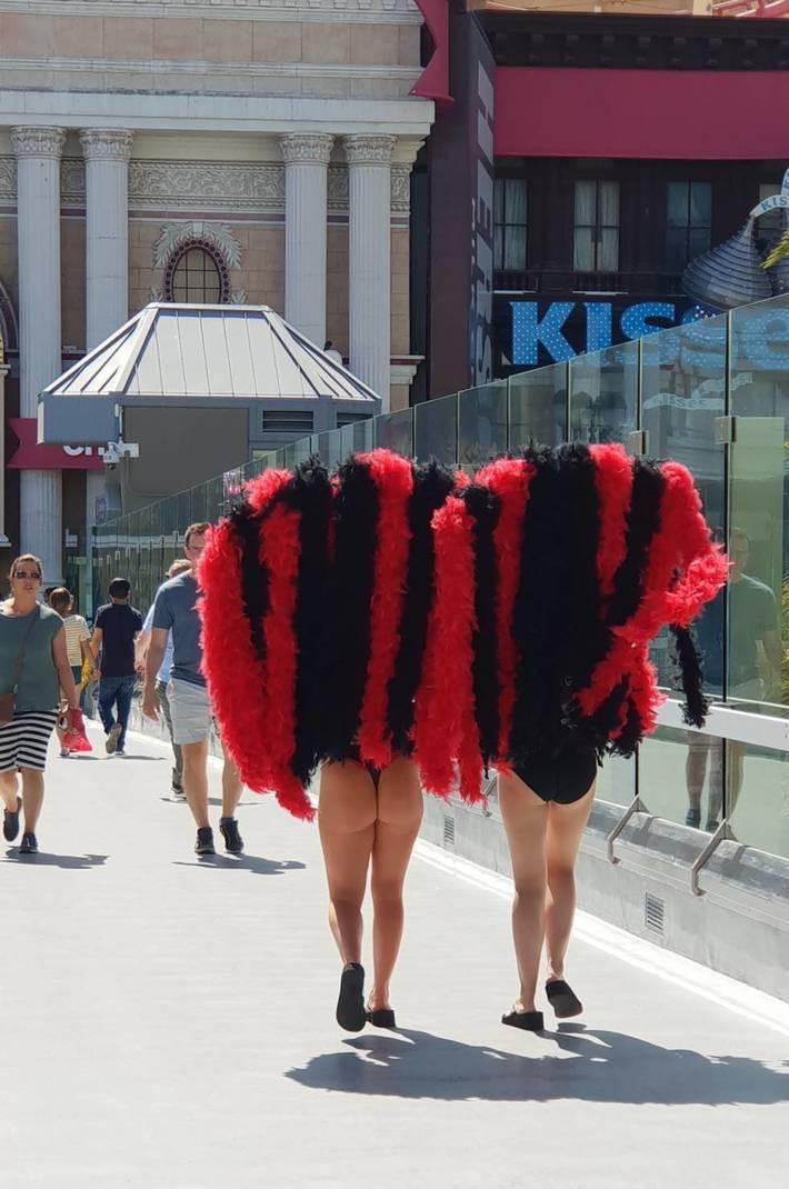 Vegas feathers