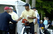 David Cook and Tiger Woods