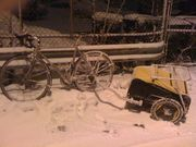 Snowy Surly-Burley