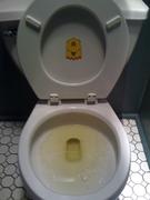 Idea Ghost Bathroom Sightings.