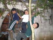 65 my friends in San Juan