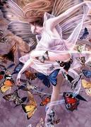 butterflies20303