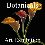 Botanicals Art Exhibition Now Online and Ready to View