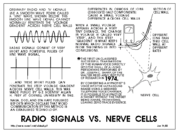 radio signal vs nerve cells Dr Sharp