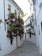 Spain2015 022
